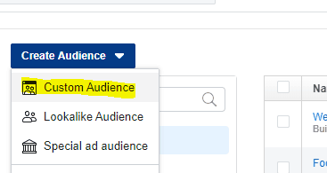 custom audience in Facebook Ads manager